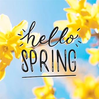 Hola letras de primavera con estilo de foto