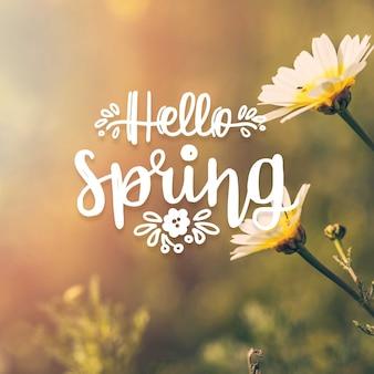 Hola letras de primavera con tema de foto
