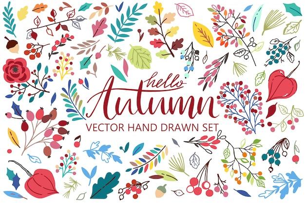 Hola otoño con hojas, bayas, flores, hermosa composición.