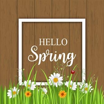 Hola primavera con manzanilla en flor y marco blanco