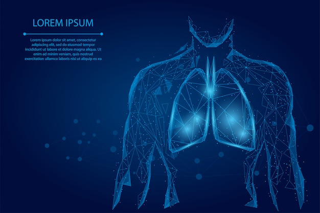 Hombre silueta pulmones sanos puntos conectados low polyframe