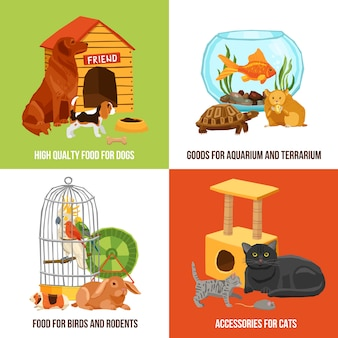 Home pets illustration