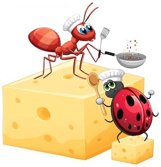 Hormiga y mariquita sobre el queso