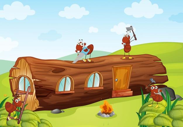 Hormigas y casa de madera.