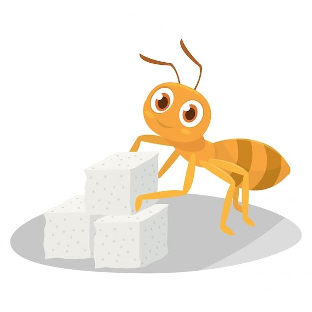 Las hormigas recogen el azúcar después de que él lo busque.