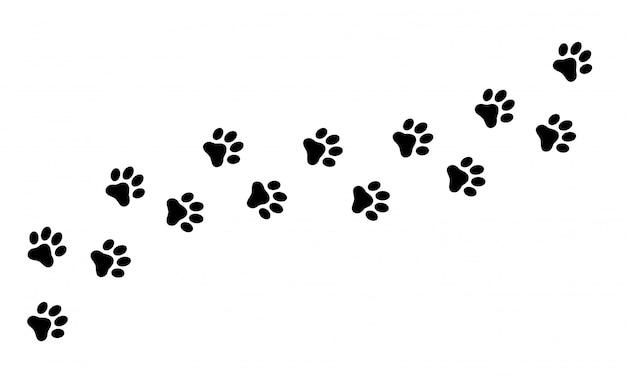 Huella de gato, perro, cachorro mascota rastro.