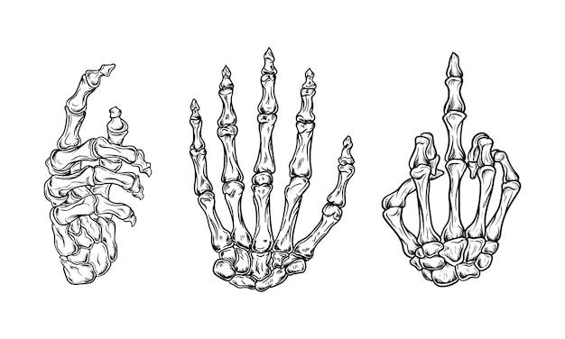 Huesos de la mano conjunto ilustración vectorial