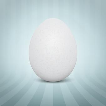 Huevo blanco realista