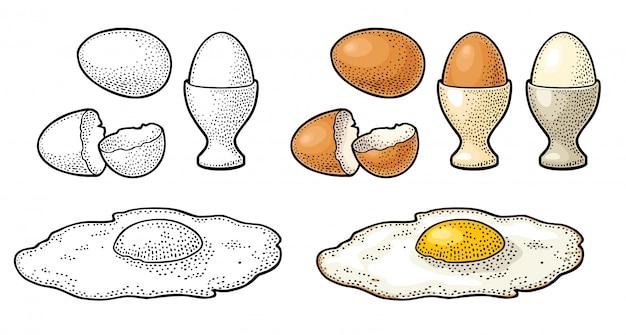 Huevo frito y cáscara rota. ilustración de grabado de color vintage