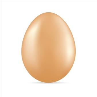 Huevo marrón aislado sobre fondo blanco