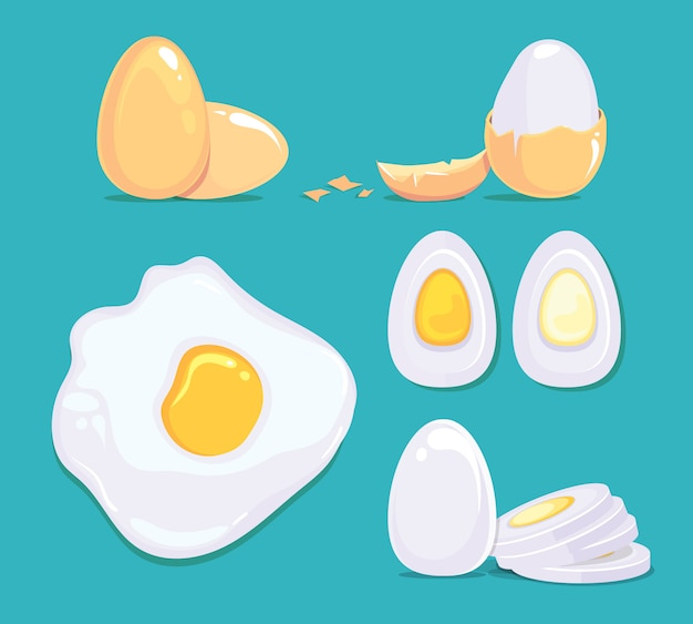 Huevos crudos y cocidos en diferentes condiciones. imágenes de dibujos animados de vector. huevo cocido crudo y hervido, ilustración de ingrediente de proteína fresca