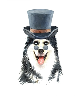 Husky siberiano de acuarela con gafas de sol y sombrero de copa.