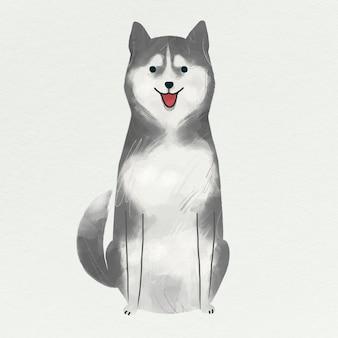 Husky siberiano sobre un fondo gris