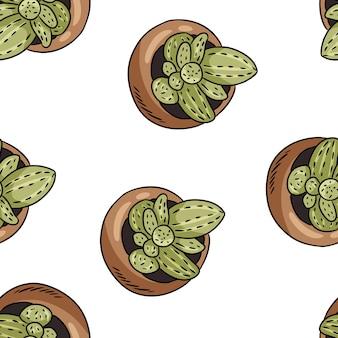 Hygge cactus en maceta patrón de frontera sin costuras. acogedor lagom estilo escandinavo garabatos suculentos vista superior textura fondo azulejo