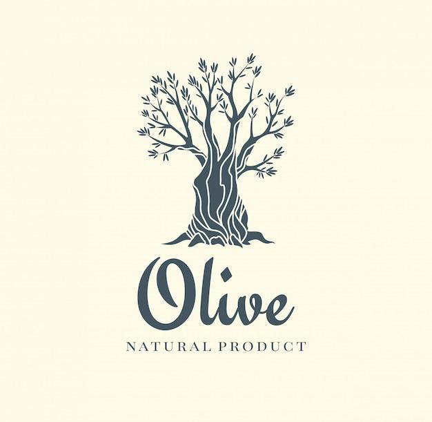 Icono aislado elegante olivo. silueta creativa de olivo. diseño de logotipo utilizado para productos publicitarios de primera calidad.