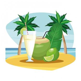 Icono de bebida de coco