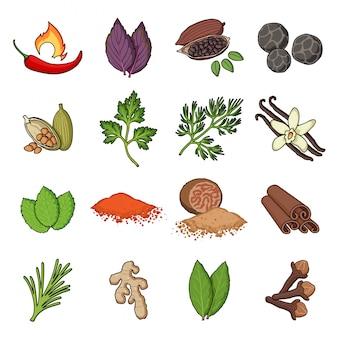 Icono de conjunto de dibujos animados de especias