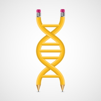 Icono creativo 3d adn de lápices.