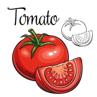 Icono de dibujo de tomate