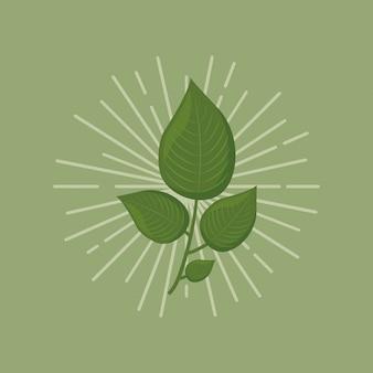 Icono de hojas verdes