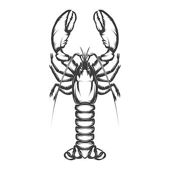 Icono de langosta sobre fondo blanco.