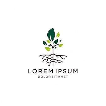 Icono de línea de logo de vector de árbol y raíz