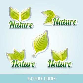 Icono natural sobre fondo azul ilustración vectorial