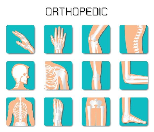 Icono de ortopedia y columna vertebral en fondo blanco.