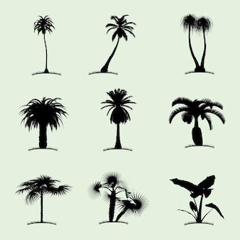 Icono plano de colección de árboles con nueve palmeras tropicales de diferente tipo ilustración