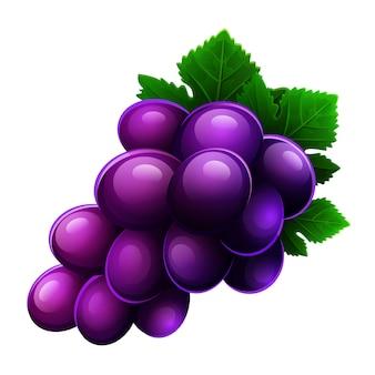 Icono de uvas aislado sobre fondo blanco