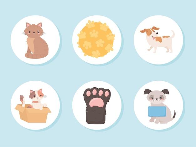 Iconos de animales de adopción