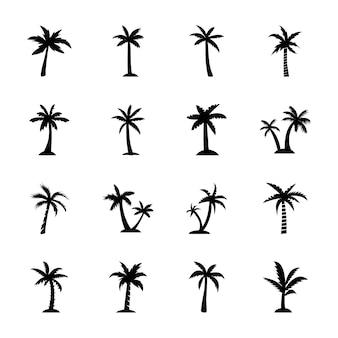 Iconos del árbol de haya