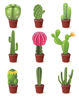 Iconos de cactus