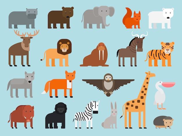 Iconos de colores planos de animales de zoológico