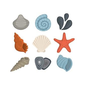 Iconos de concha de mar. conjunto de moluscos almejas. concha de berberecho del océano.
