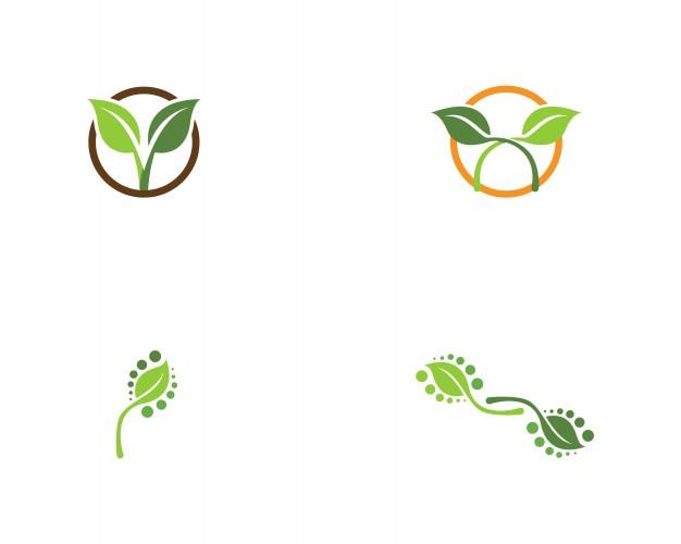 Iconos de vector de elemento de naturaleza verde hoja ecología