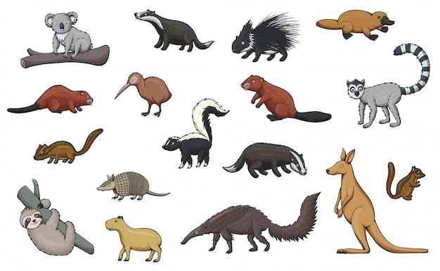 Iconos de dibujos animados de animales salvajes del zoológico y la vida silvestre