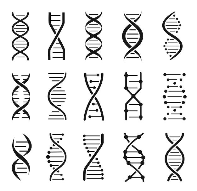 Iconos de estructura de la molécula de adn cromosoma cadena hélice código genético logo vector set