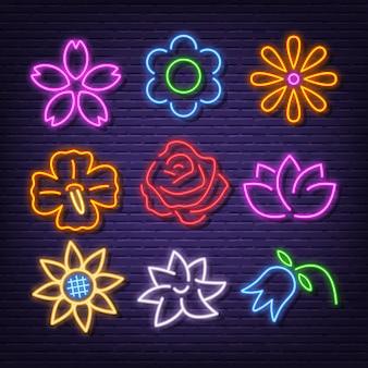 Iconos de flores de neón