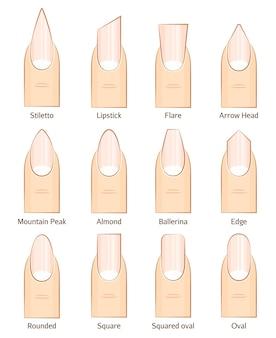 Iconos de línea de forma de uñas.