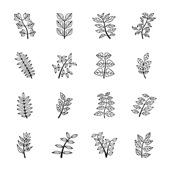 Iconos de línea de hojas de árbol