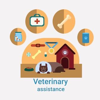 Iconos de medicina veterinaria clínica de asistencia veterinaria