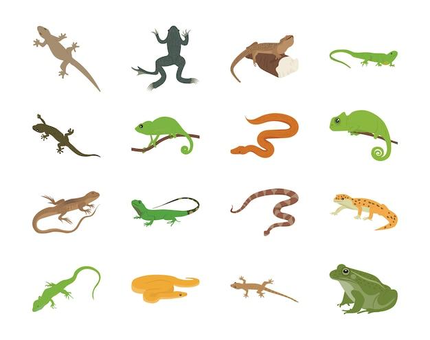Iconos planos de anfibios