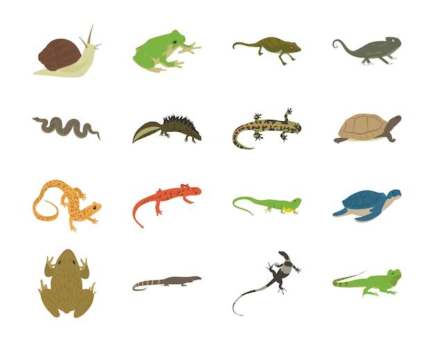 Iconos planos de reptiles