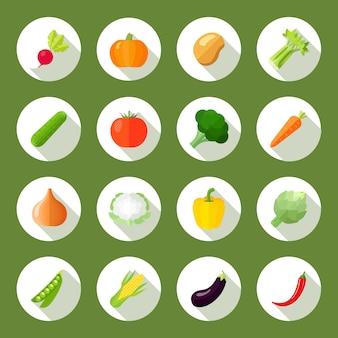 Los iconos de las verduras fijados fijan con el apio de la patata de la calabaza del rábano aislaron el ejemplo del vector