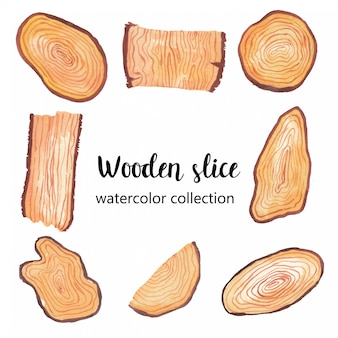 Ilustración acuarela de rebanada de madera