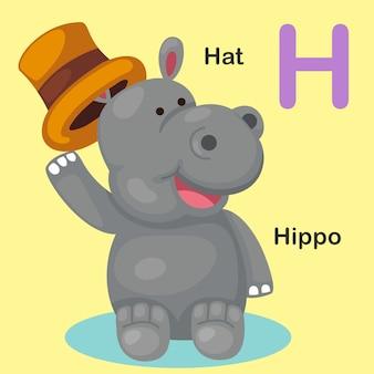 Ilustración aislada del alfabeto animal letra h-hat, hipopótamo