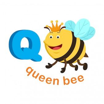 Ilustración aislada del alfabeto letra q abeja reina