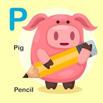 Ilustración aislado alfabeto animal letra p-pig, lápiz
