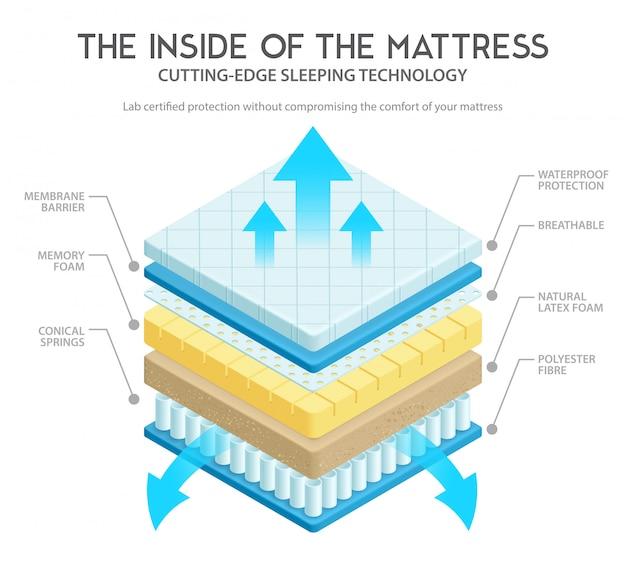 Ilustración de anatomía del colchón